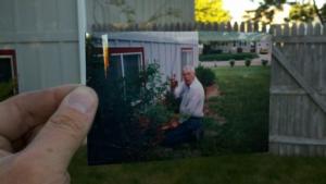old man tending to garden